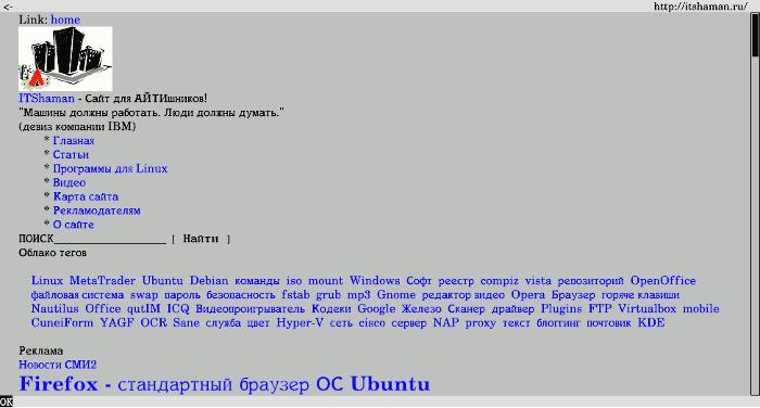 браузеры для Linux - фото 11