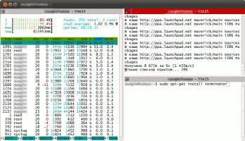 Terminator - удобная многооконность терминала Linux